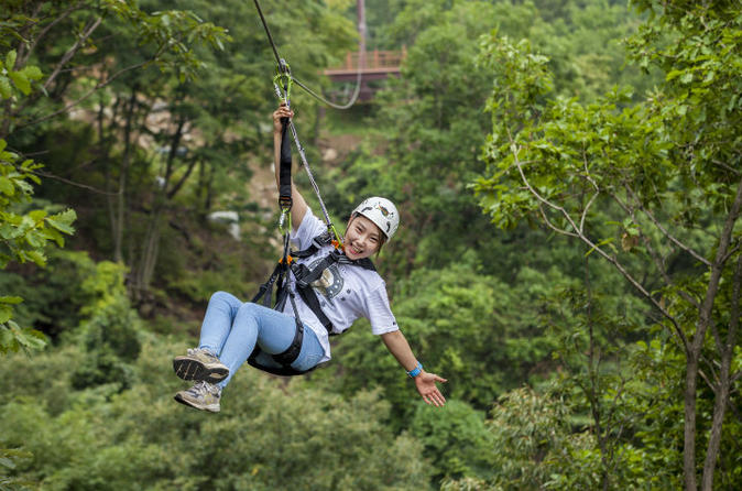 Exciting Yongin Zipline And Everland One Day Tour - Yongin-si