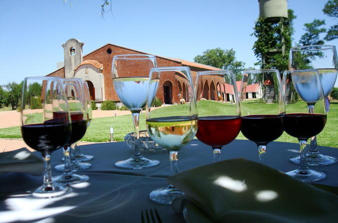 Almoço na vinícola Bouza