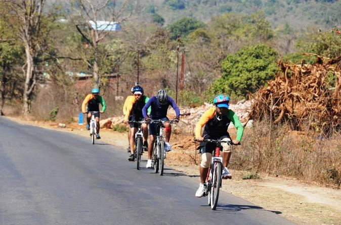 Guided Bicycle Tour Of Bangalore's Countryside - Bengaluru