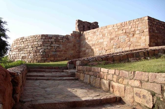 The Cruel Tughlaq Dynasty - A Private Historical Walk - Delhi