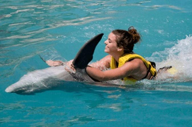 Cozumel Dolphin Swim and Ride Program