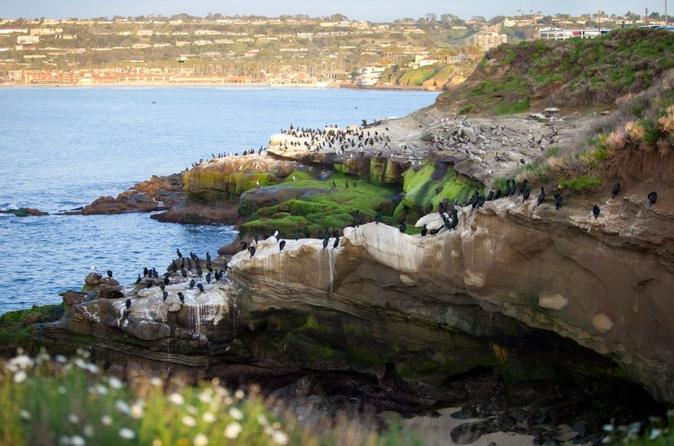 Private Tour: Customizable San Diego Sightseeing