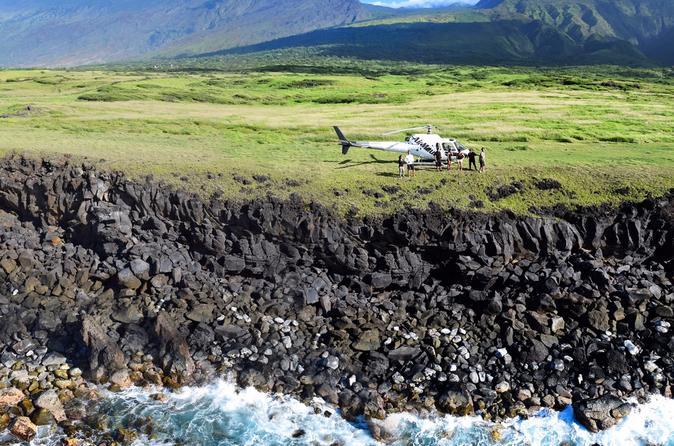 Hana and Haleakala Maui Helicopter Tour with Cliffside Landing