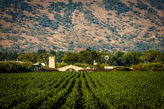 Premium Half-Day Napa Valley Wine Tour