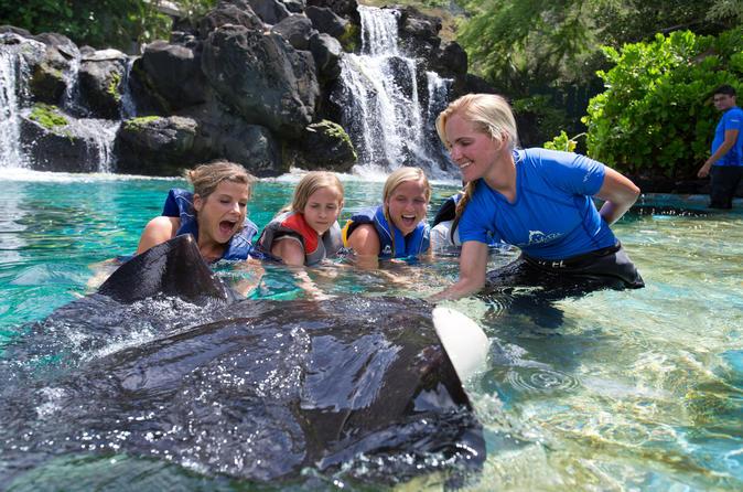 Hawaiian Reef and Ray Encounter at Sea Life Park Hawaii