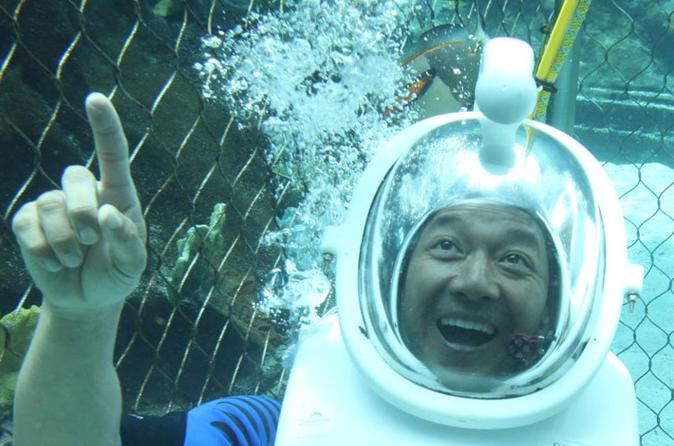 Sea Life Park Hawaii Admission and Underwater Sea Lion or Shark Swim