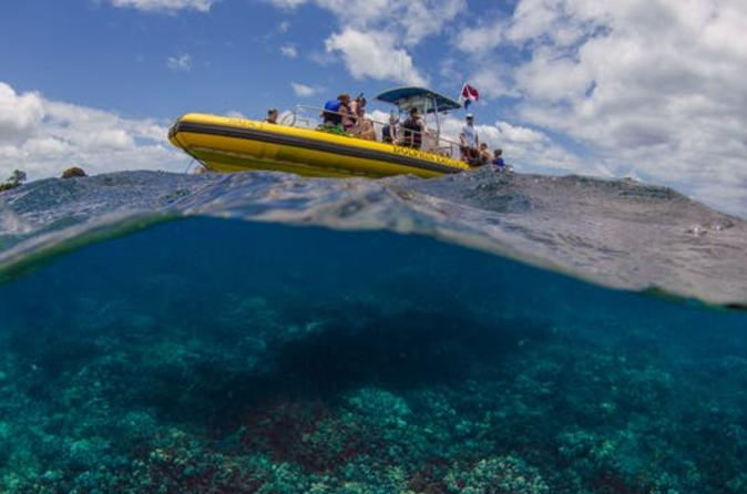 Waianae coast snorkel cruise with dolphin and seasonal whale watching in oahu 749094