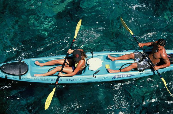 Snorkel kayak and dolphin experience in the big island s kealakekua in hawaii 105128