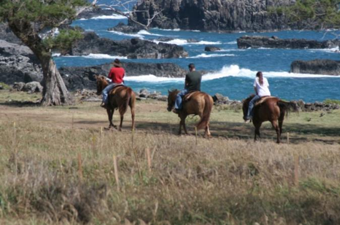 Maui horseback riding tour with optional bbq lunch in maui 112419