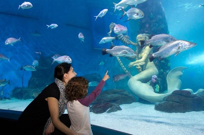 Evite as Filas: ingresso de entrada para o Aquário de Melbourne SEA LIFE