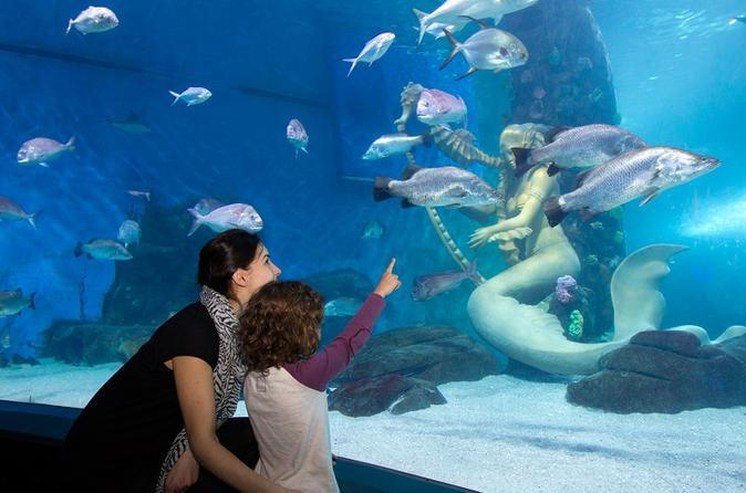 skip the line sea melbourne aquarium admission ticket 2017 melbourne