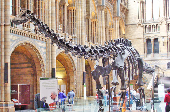 Kid-Friendly Natural History Museum & Dinosaurs Private Guided Tour in London