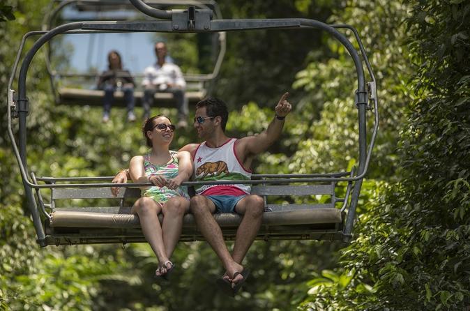 Jamaica Mystic Mountain Sky Explorer Tour From Ocho Rios Pier