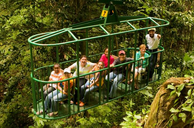 Rainforest Adventures Aerial Tram Tour, St. Lucia Tours, Travel & Activities