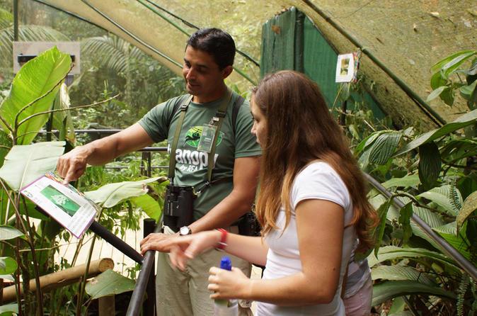 Rainforest Adventures Nature Exploration Tour
