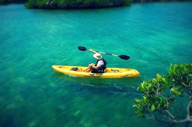 Mangrove Lagoon Kayak Rental in St Thomas