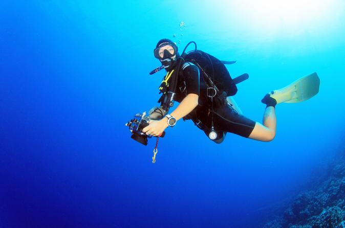 Makadi Bay Scuba Diving Trip - Hurghada