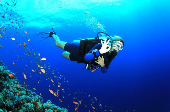 PADI Open Water Diving Course Makadi Bay - Hurghada