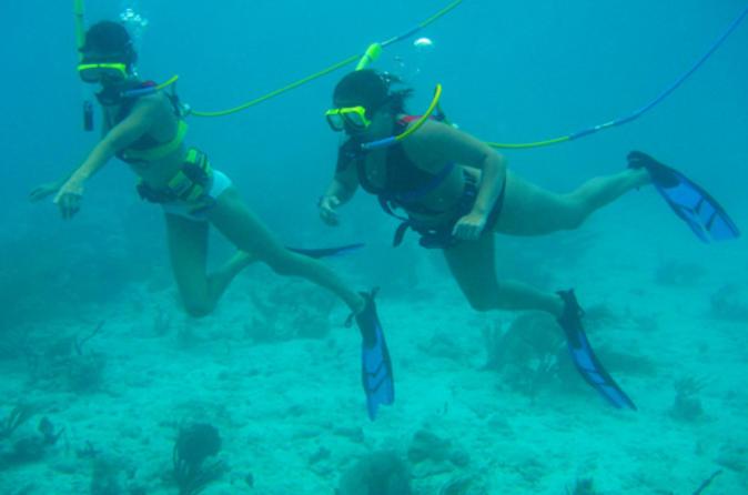 St Thomas Shore Excursion: Snuba Adventure at Coral World Ocean Park