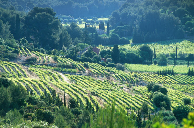 Half Day Wine Tour In Bandol & Cassis From Aix En Provence - Aix-en-provence