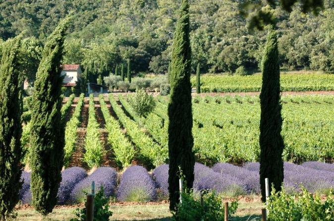 Half Day Wine Tour In Coteaux D'Aix And Luberon From Aix En Provence - Aix-en-provence