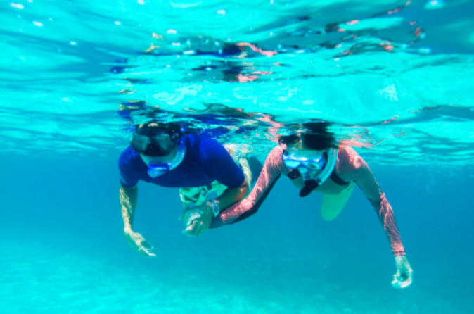 St Kitts Shore Excursion: Kayak and Snorkel Adventure