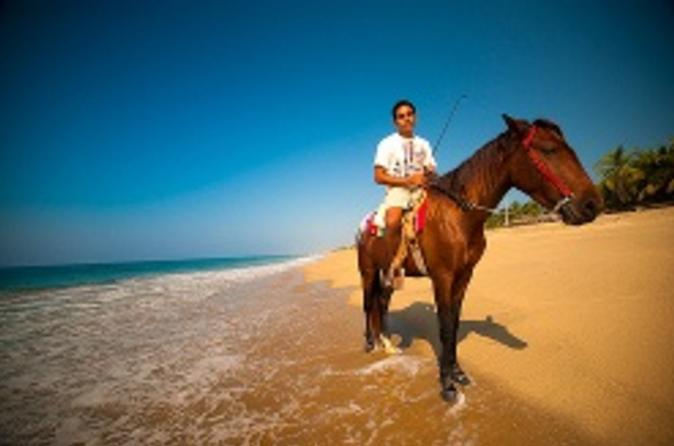 Ixtapa shore excursion horseback riding on zihuatanejo bay in ixtapa 50584