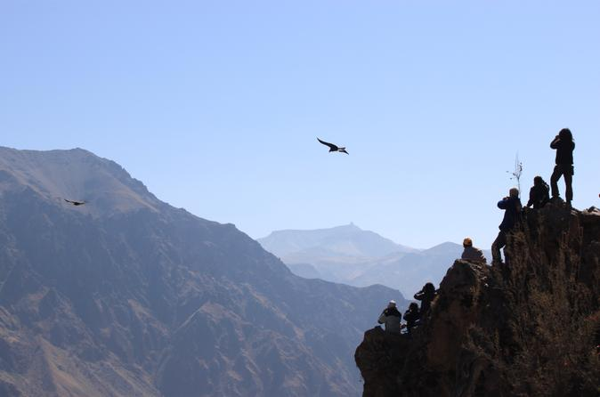 Colca Valley Overnight Tour From Arequipa: Colca Canyon, Vicuna Reserve And Condors