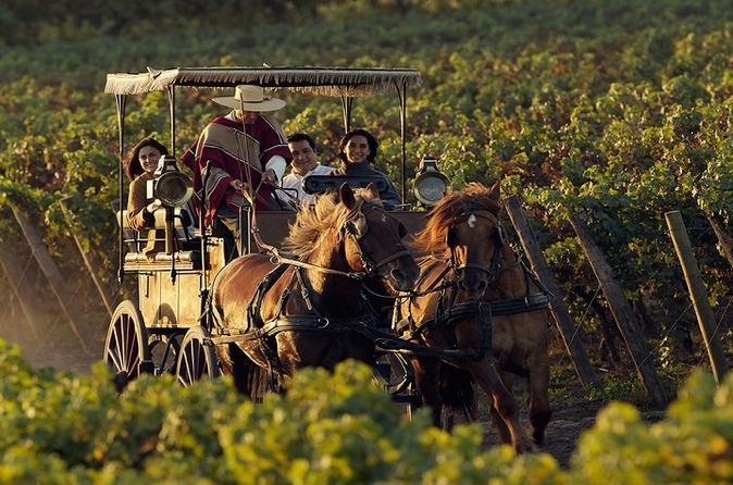 Colchagua Wine Route Tour from Santiago