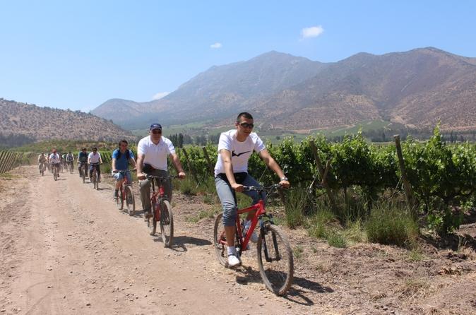 Excursão de bicicleta para degustação de vinhos na vinícola Santa Rita