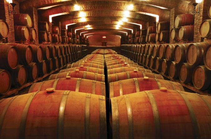 Excursão de meio dia pela vinícola Undurraga saindo de Santiago