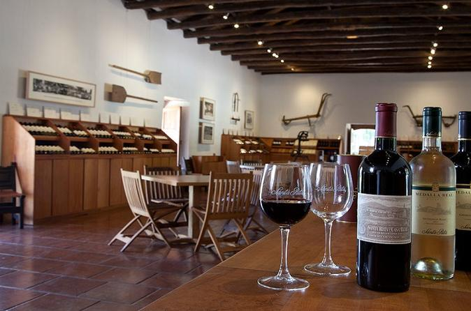 Santa Rita Winery Tour From Santiago