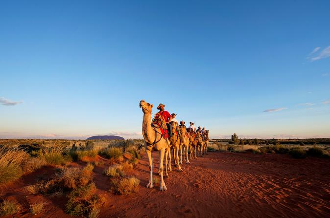 Uluru camel express sunrise or sunset tours in ayers rock 508524