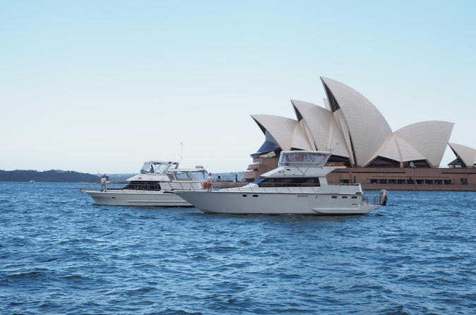 Small-Group Sydney Harbour Morning Tea Cruise