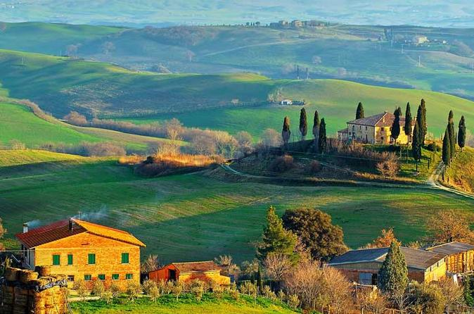 Small group wine tasting experience in the tuscan countryside in florence 213548