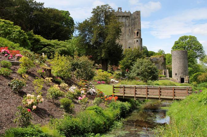 Viagem diurna ao Castelo de Blarney saindo de Dublin