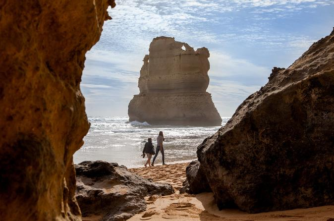2 day great ocean road mornington peninsula and phillip island tour in melbourne 631518