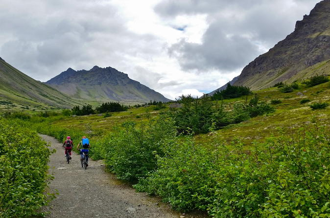 Fat Tire Biking in Chugach State Park Tour