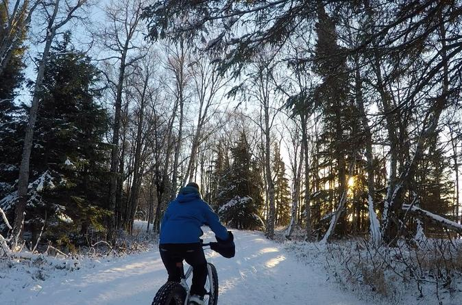 Northern Exposure Fat Tire Bike and Rail Tour