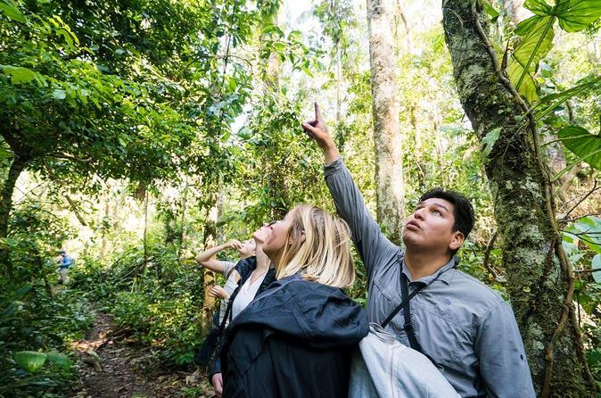 4 Tage Peru Amazonas Dschungel mit Lodge Unterkunft