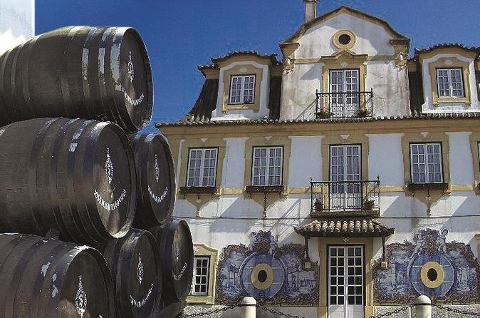 Gita di un giorno per piccoli gruppi ad Arrabida e Sesimbra da Lisbona con degustazione di vino