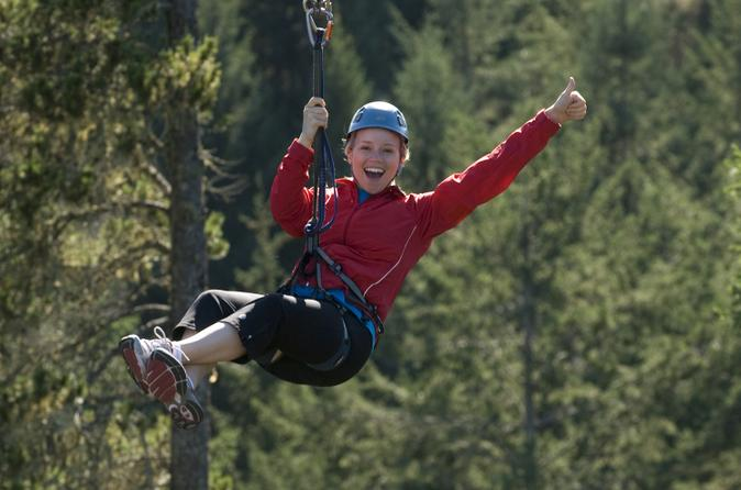 Victoria Shore Excursion: Small-Group Zipline Adventure