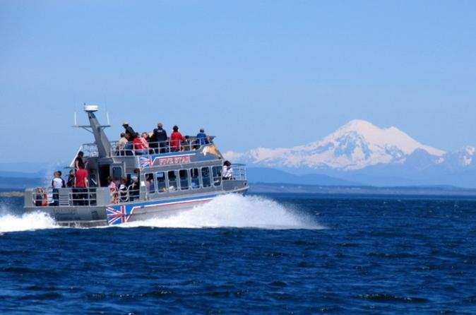 Victoria Shore Excursion: Whale-Watching Cruise with Expert Naturalist Guides