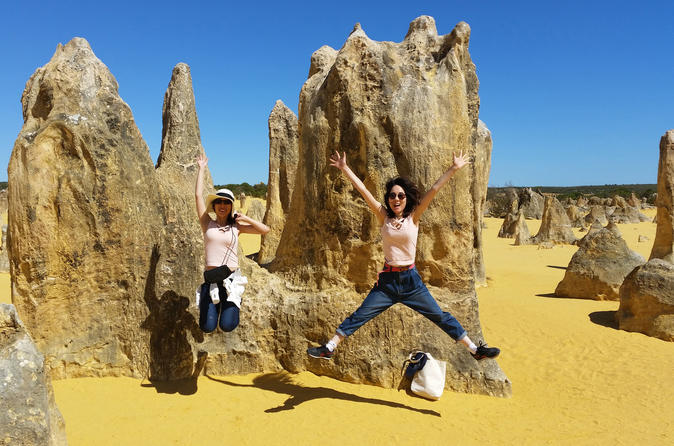 Full-Day Tour to Pinnacles Desert and Yanchep National Park from Perth