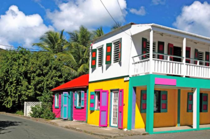 Road Town Shore Excursion: Tortola Island Adventure