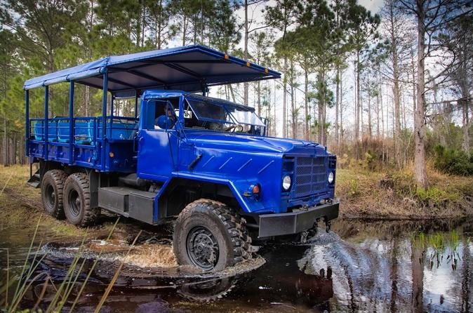 Swamp Buggy Tour and Wild Florida Wildlife Park Admission