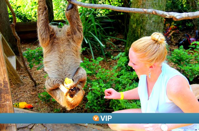 VIP da Viator: Programa Guardião por um dia na Flórida Selvagem