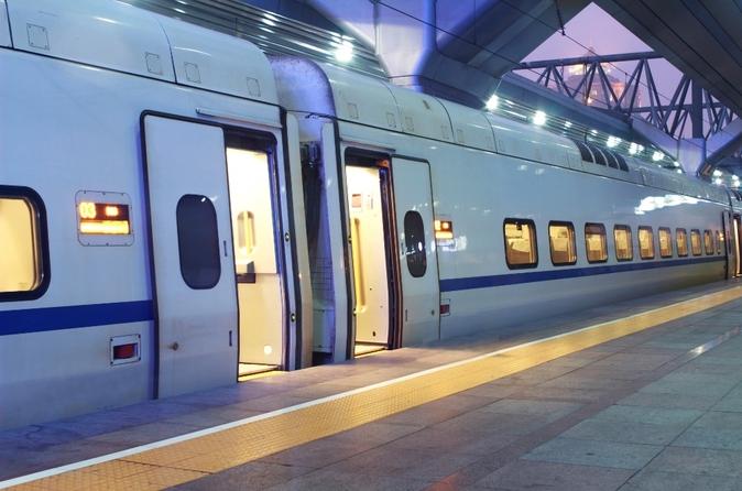 Traslado de chegada privado: Estação de trem de Roma para o hotel