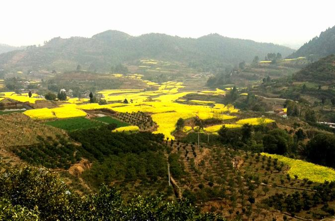Private Tour: Huanglongxi Ancient Town and Countryside Trekking from Chengdu