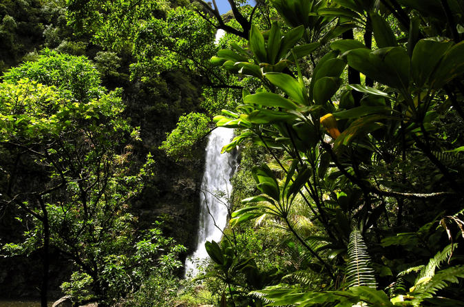 Small group luxury day trip to haleakala national park and hana coast in maui 117628